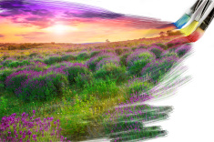 stock-photo-48674142-artist-brush-painting-picture-of-beautiful-landscape